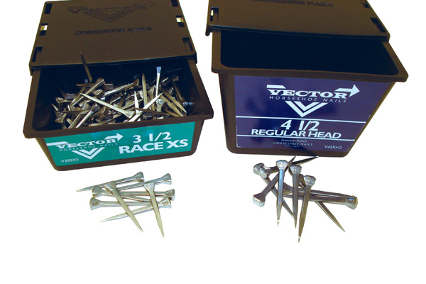 Vectore Horseshoe Nails
